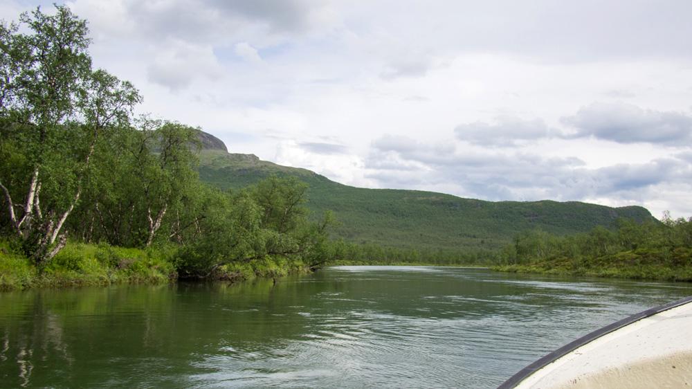 vistasdalen-safari